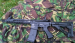 STG4 Kal 223 ASTRA ARMS